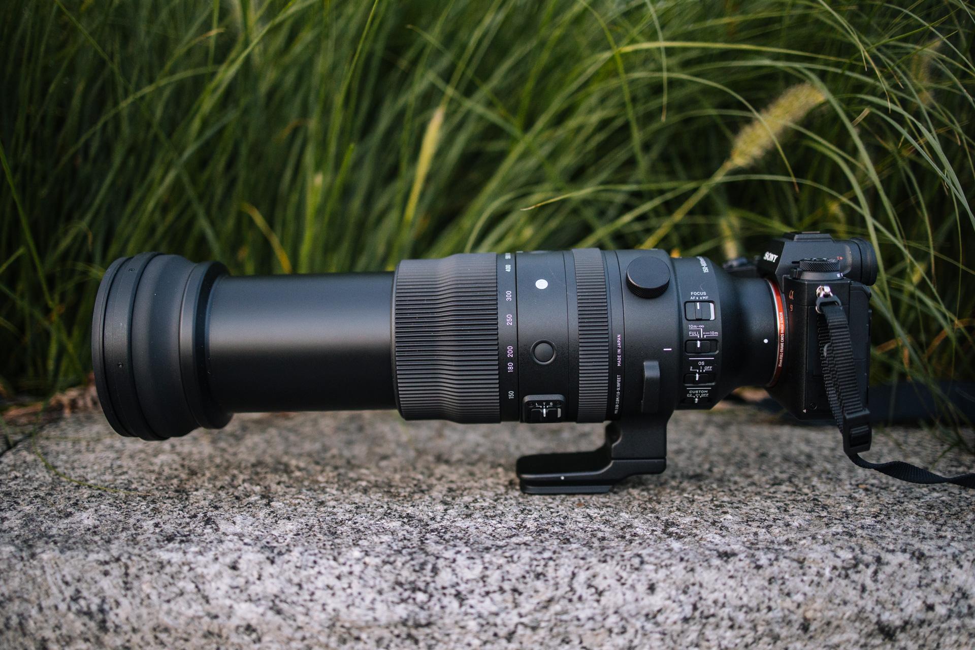 Sigma S 150-600 mm f/5-6.5 DG DN OS podpięta przy 600 mm